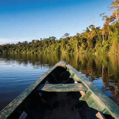 Avatar nutricion amazónica
