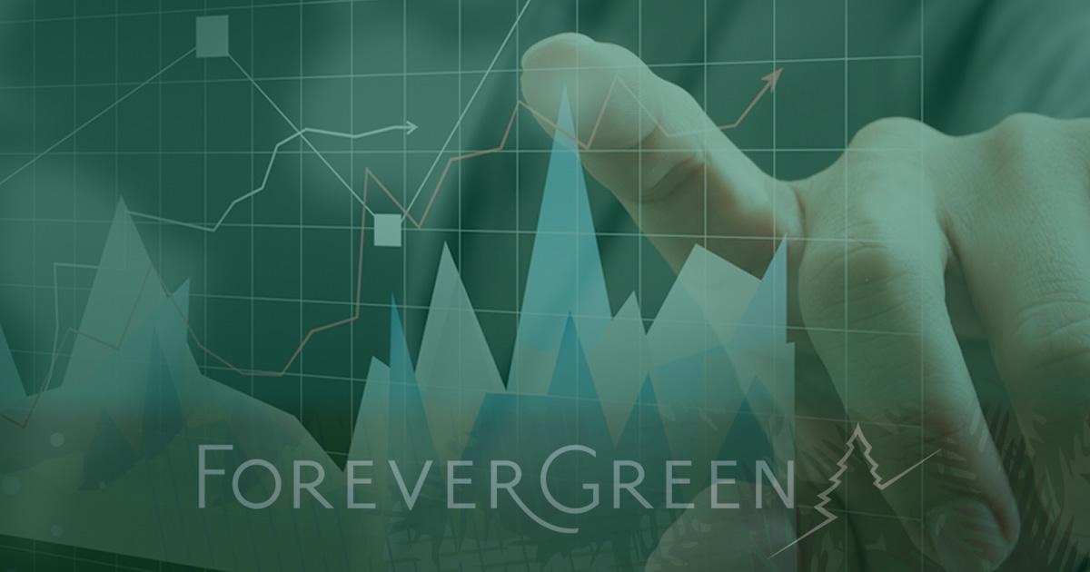 forevergreen-5-porciento-agosto