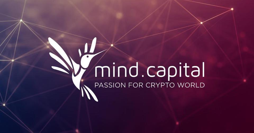 Criptomonedas: Mind Capital comienza otra estafa, esta vez con múltiples tokens
