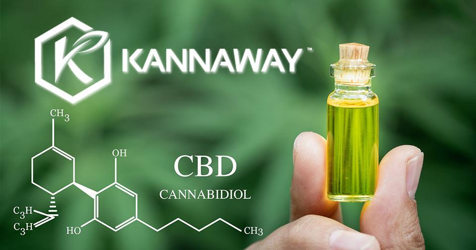 Empresas: Kannaway es nombrada la empresa de cannabidiol más popular de la industria MLM