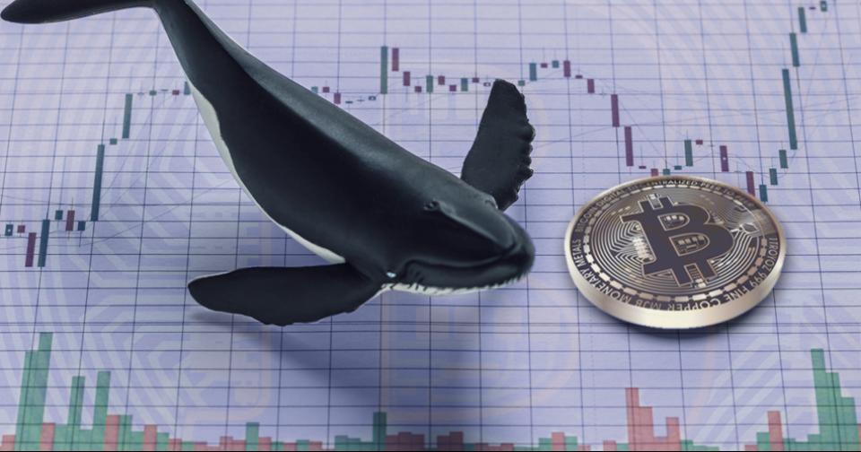 Criptomonedas: Se mueven $43 millones de dólares en Bitcoin desde Xapo