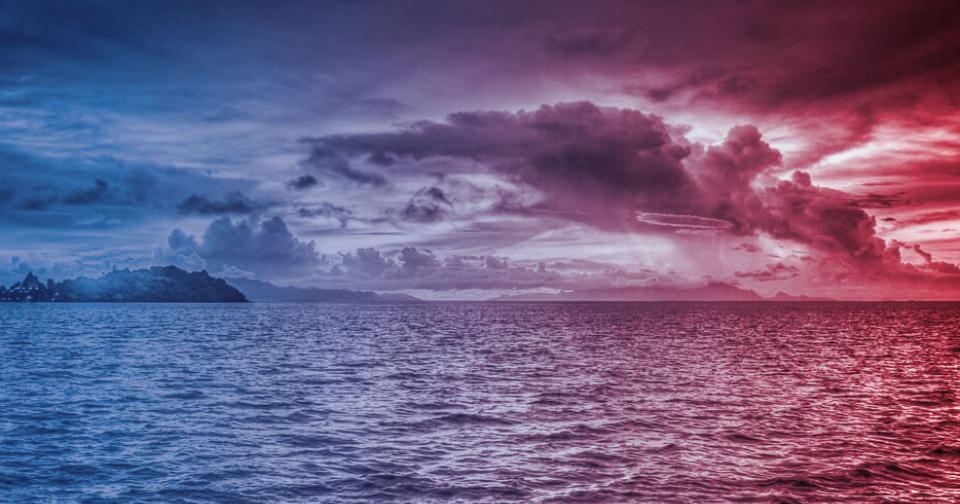 Opinión: Los productos naturales diferenciados, el nuevo océano rojo dentro del océano azul