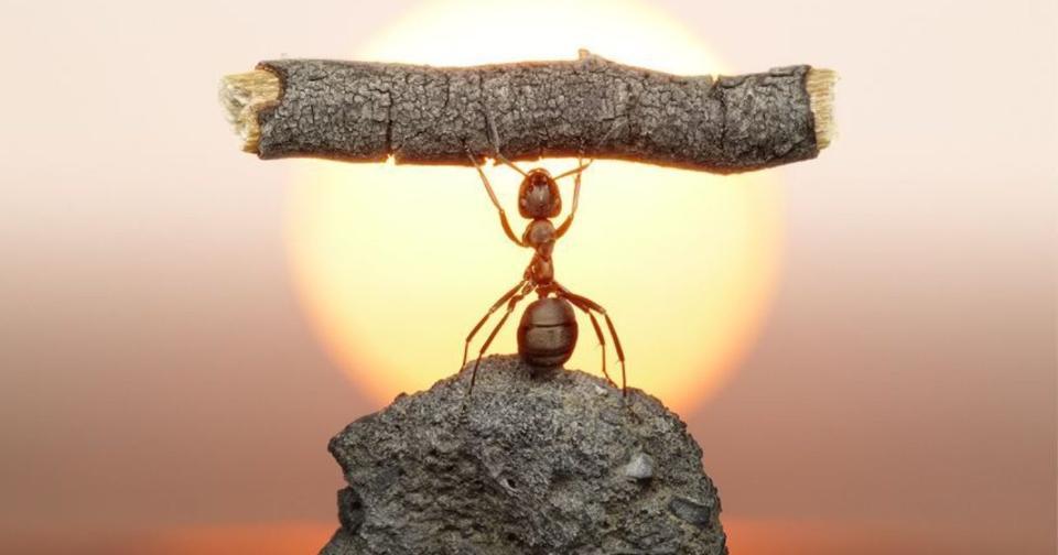 Formación: 3 consejos para mantenerte motivado en tiempos de crisis
