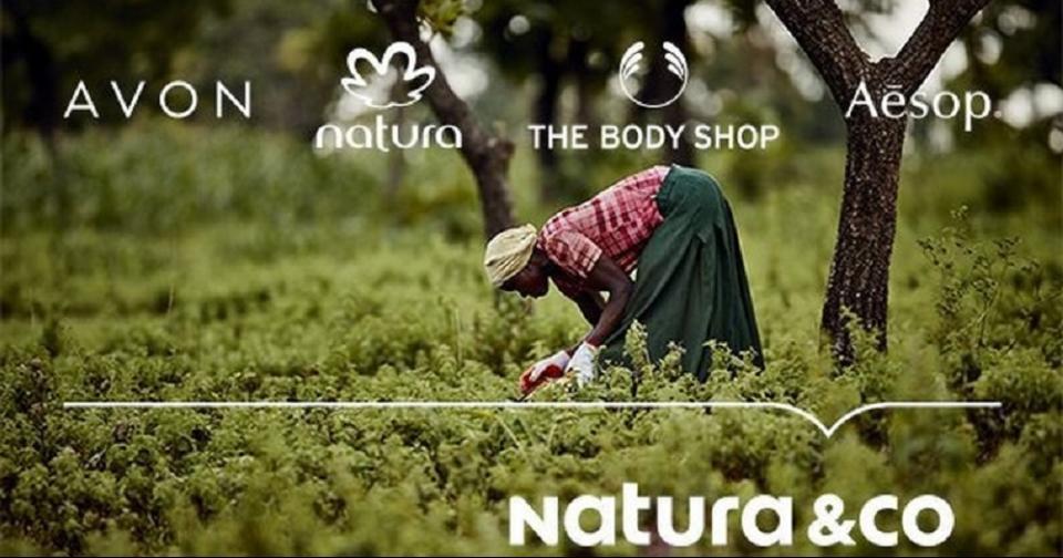 Empresas: Natura &Co recibe la certificación B por su responsabilidad social y ambiental