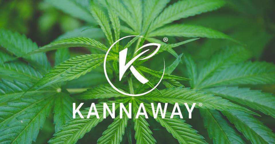 Empresas: Kannaway®, Febrero de 2021: mejor año en la historia de la división de Japón