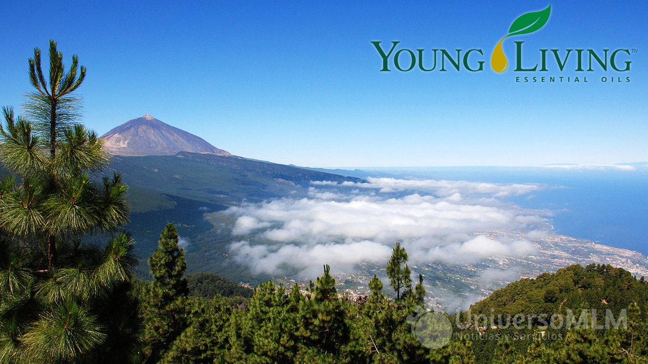 young-living-sel2016