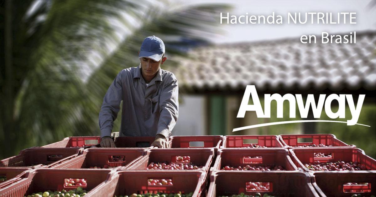 Cultivos de Nutrilite en Brasil