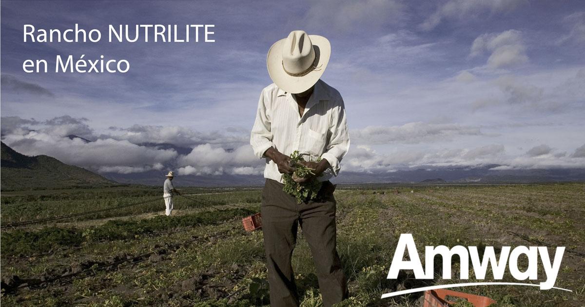 Cultivos de Nutrilite en México