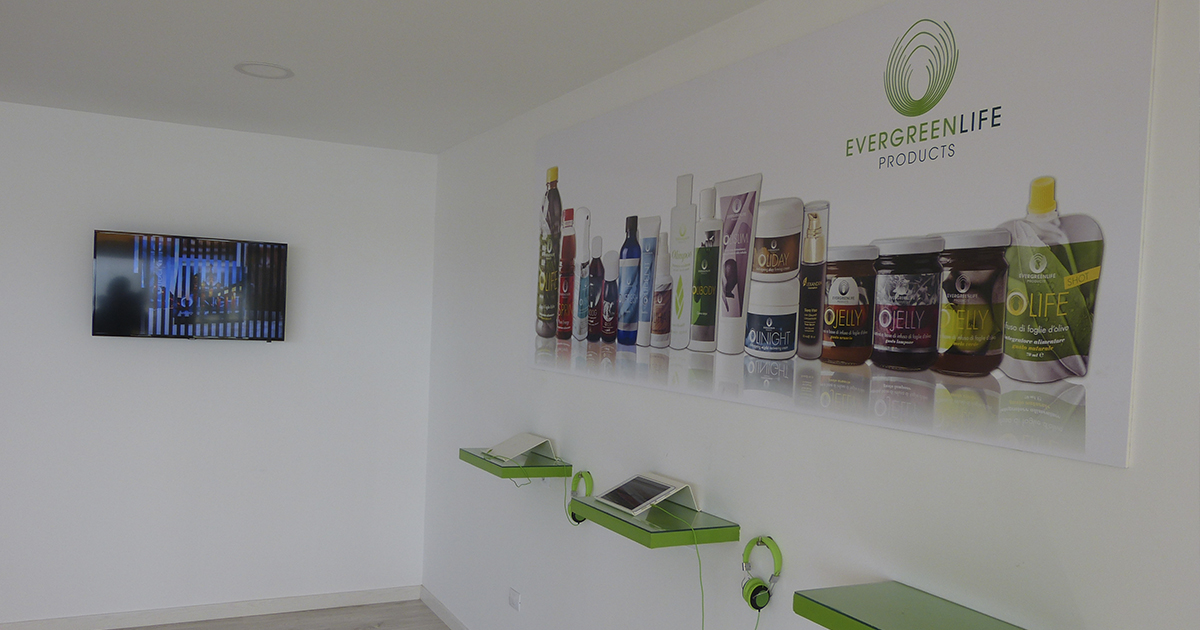 evergreen-productos.jpg