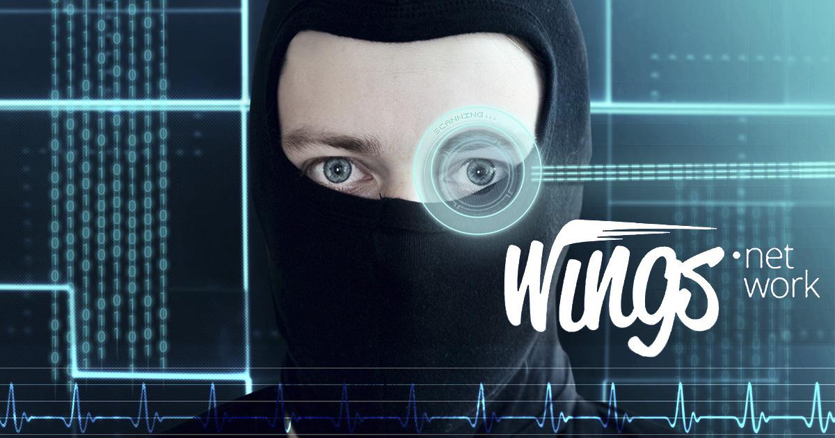 wings-network-investigada