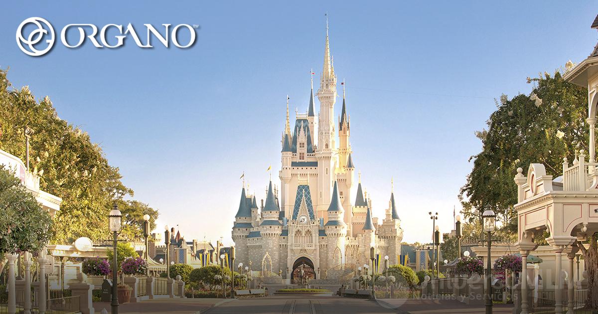 Viaje incentivo de Organo Gold a Disney World