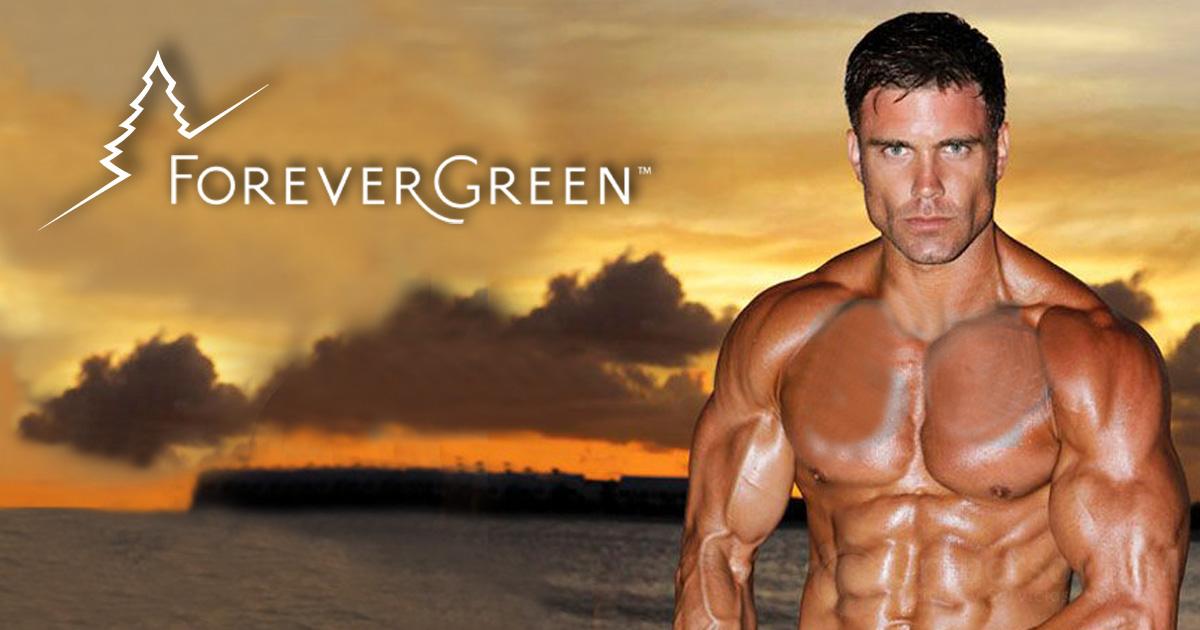 forevergreen-david-kimmerle